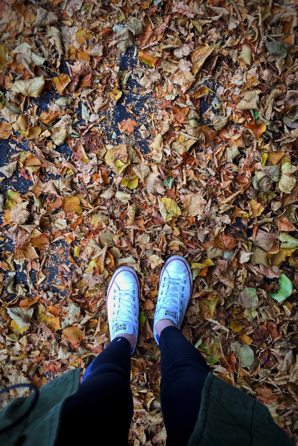 white converse and orange leaves