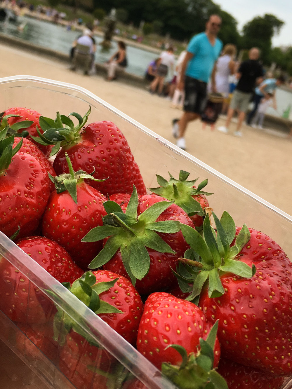 strawberries from a little market