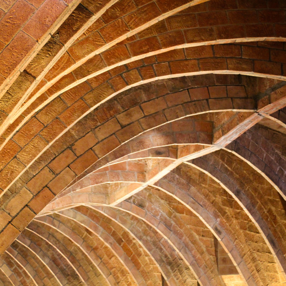 spine-like attic
