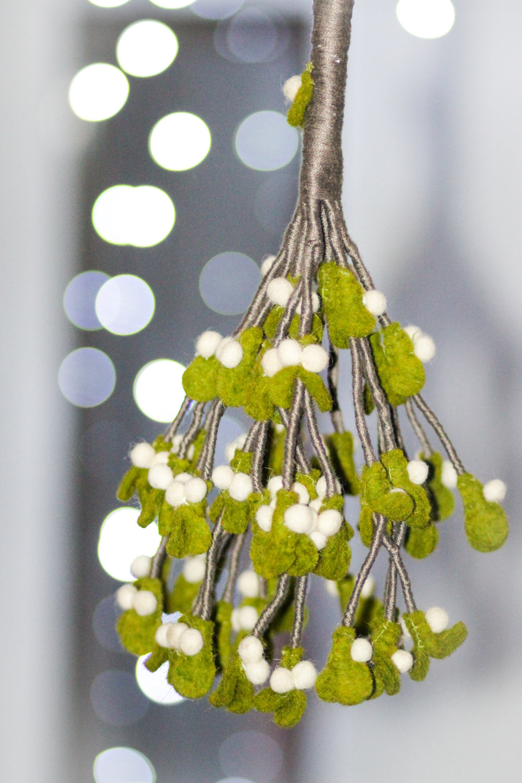 mistletoe bokeh