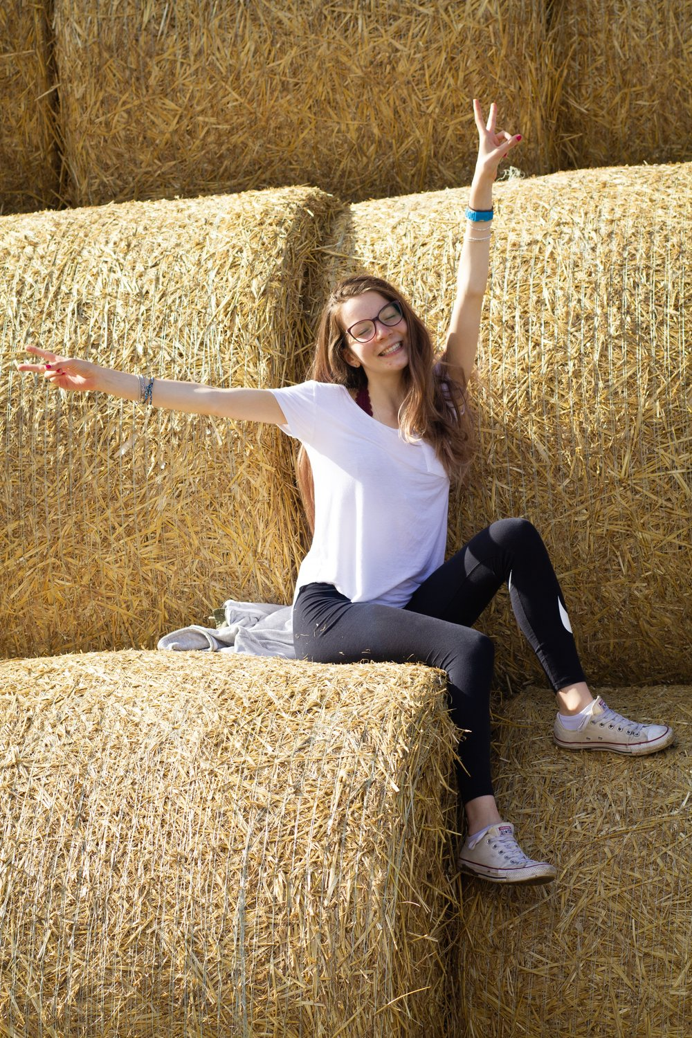 10th August - hey it's hay!