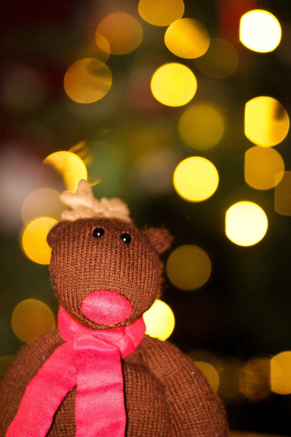 18th December - some  Christmassy bokeh