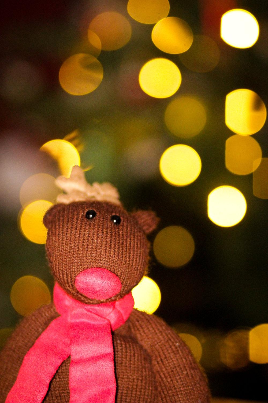 18th December - some  Christmassy bokeh