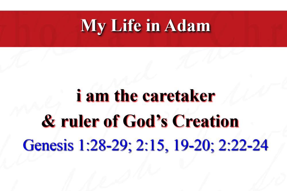 Who-I-Am-in-Christ-Part-2-Image.png