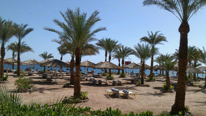 local-beach.png