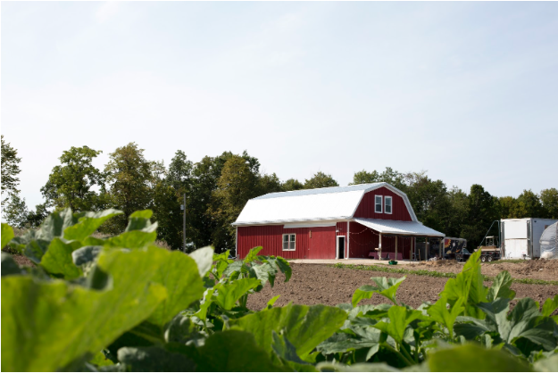 Summer & Year-Round Farm-Share CSA programs through Green Wagon Farm, Ada MI