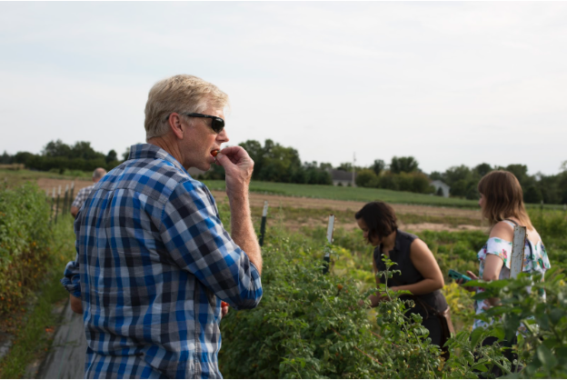 Members try the organic vegetables that are harvested (photo).