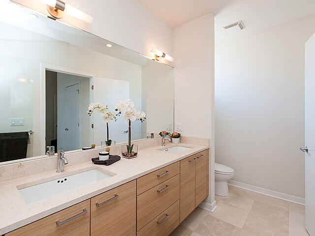 1250-N-Paulina-Chicago-Apartments-for-Rent-Master-Bathroom-Counter.jpeg