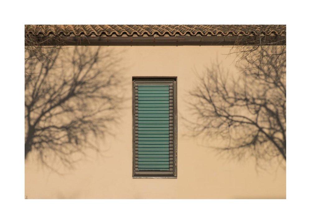 dos arbres frame 8.jpg