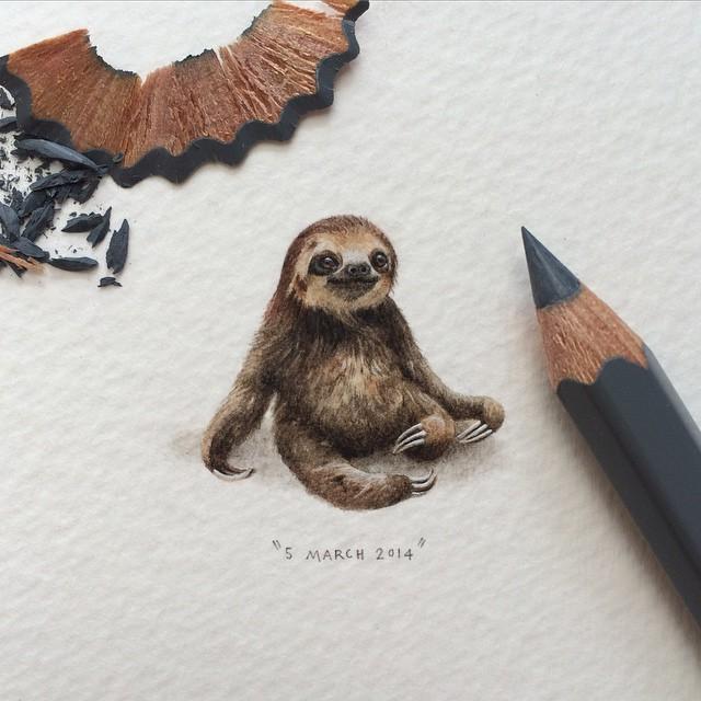 sloth2015.jpg