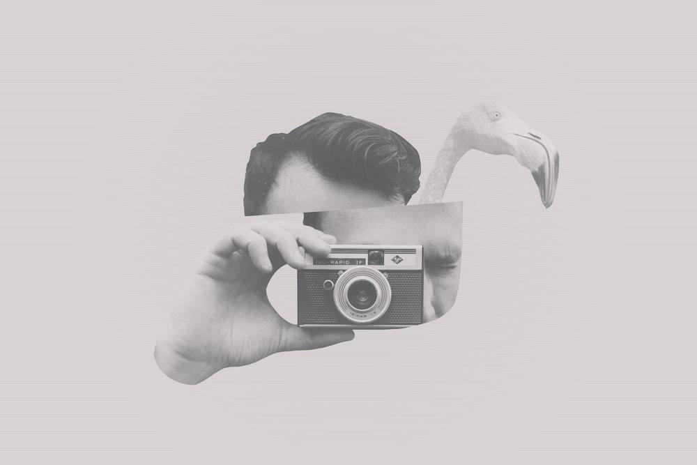 Flamingo man.jpg