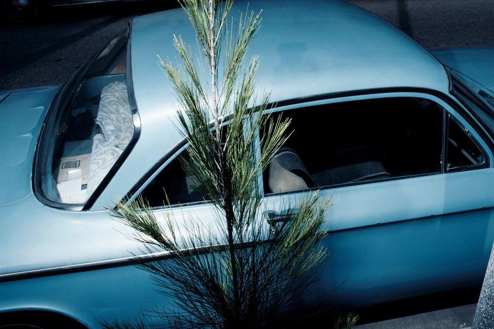 voiture 2_2.jpg
