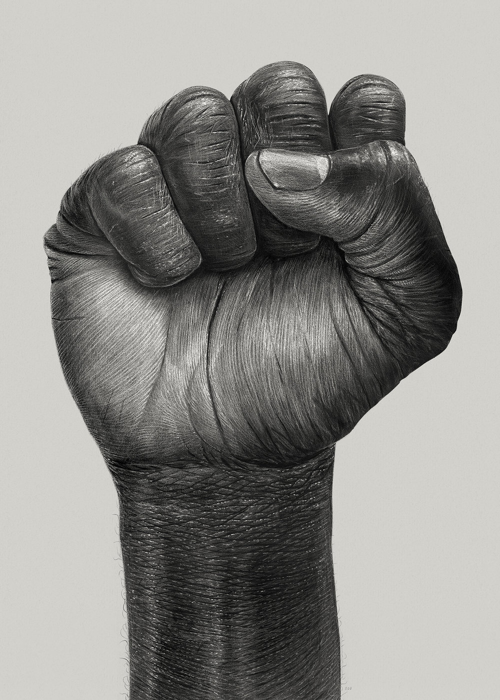 Raised_fist.jpg