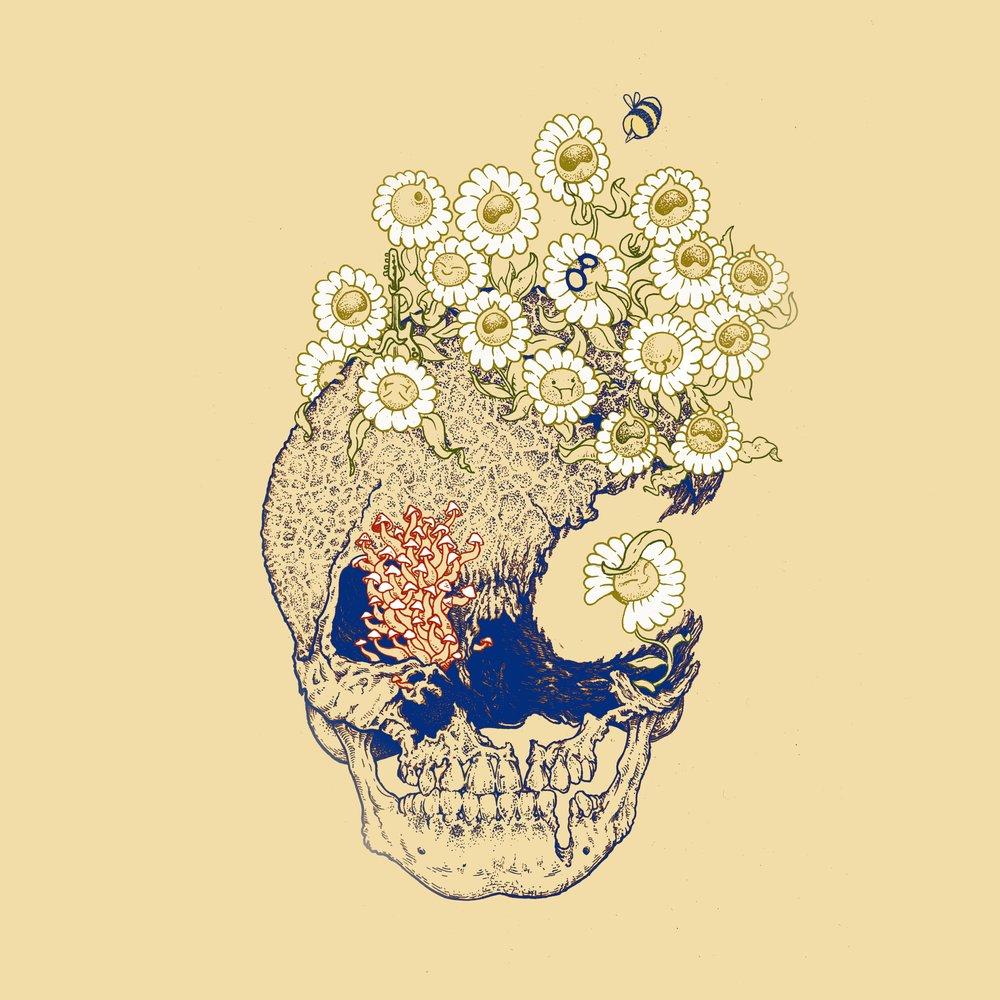 theo-w-scott-flowerskullbg.jpg