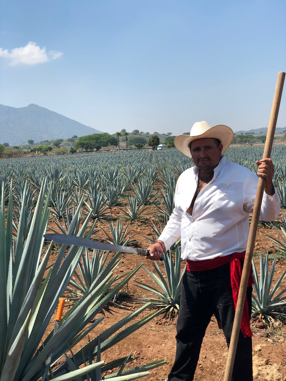 Tequila Man.jpg