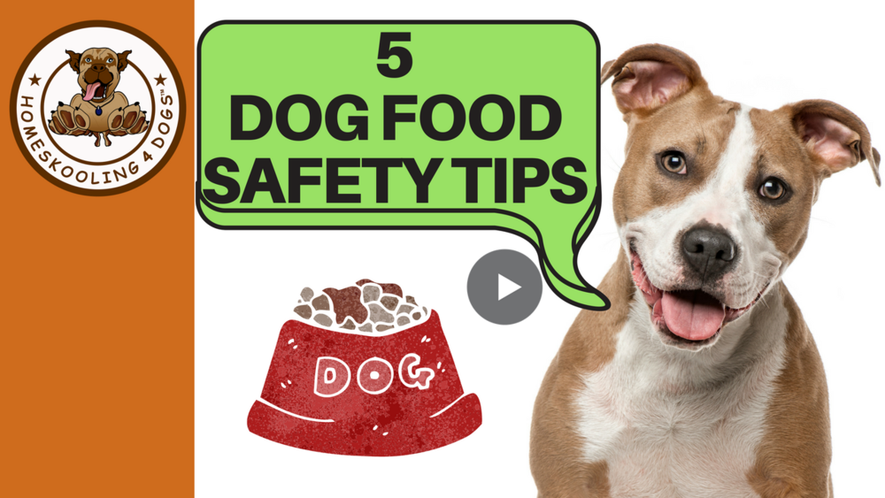 Dog food safety & storage