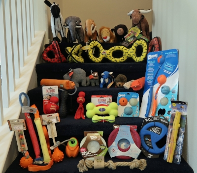 Fetch & Interactive Dog Toys - Buyer's Guide