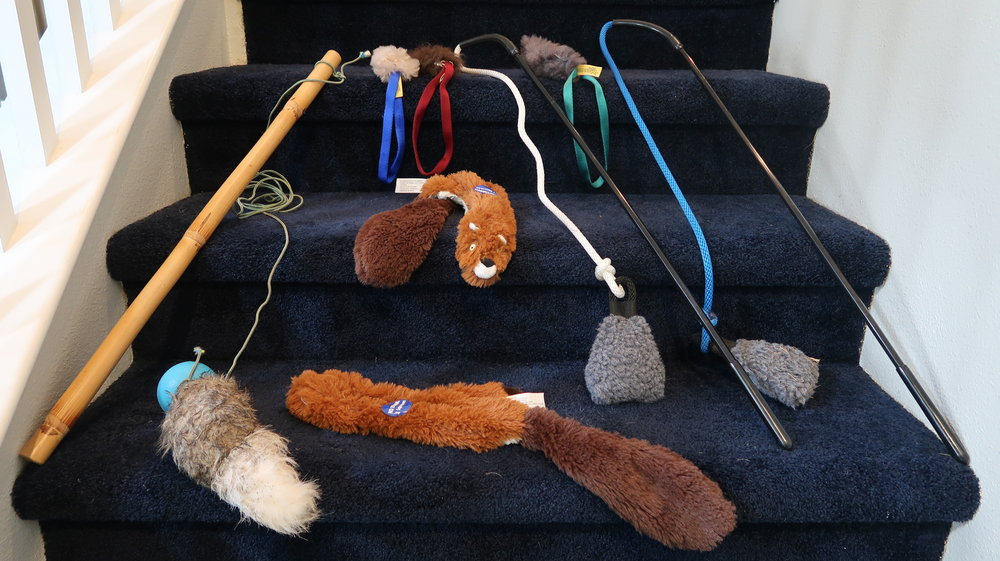 Hound Breed Dog Toys - Buyer's Guide page 20
