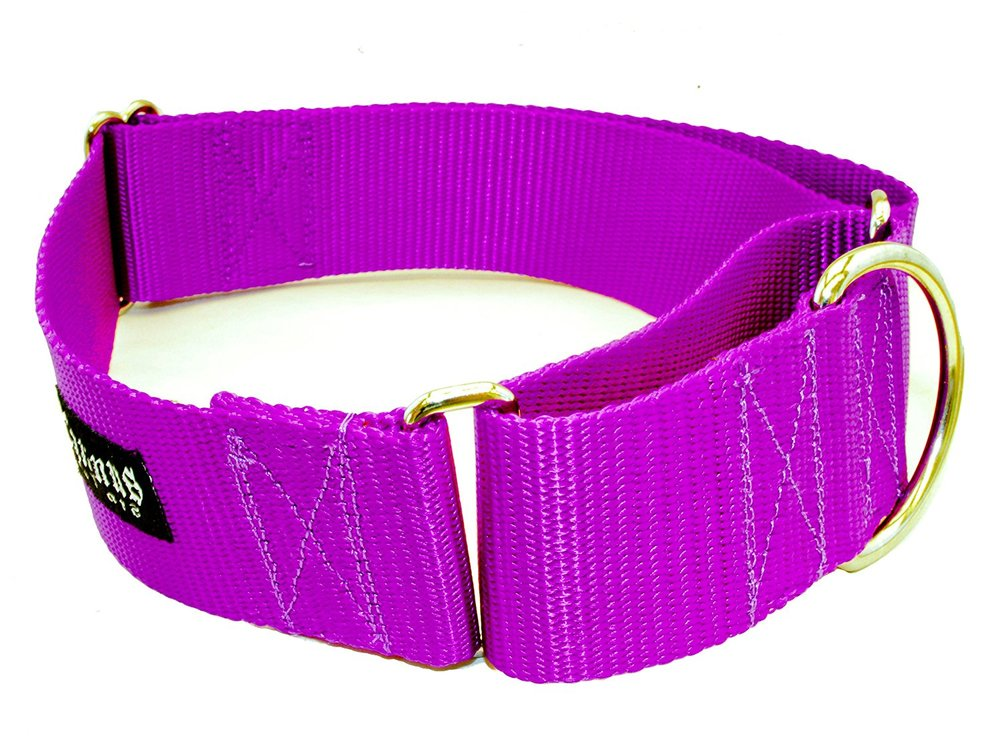 "Caninus collars are my favorite training collar for medium, large, and giant dogs. They are very soft and comfortable. I use the 1 1/2"" width for medium and large dogs, and the 2"" width for some large and giant dogs."
