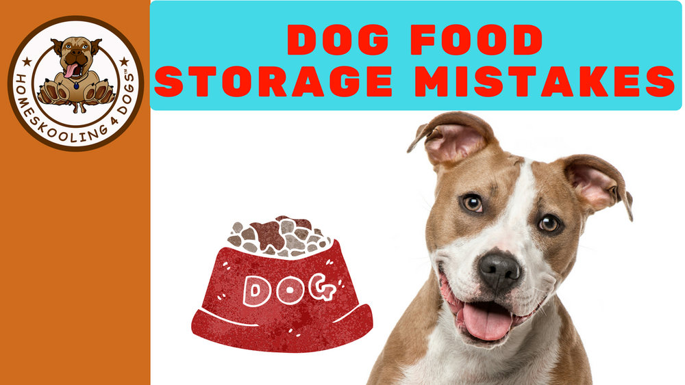 Dog Food Storage Mistakes.jpg