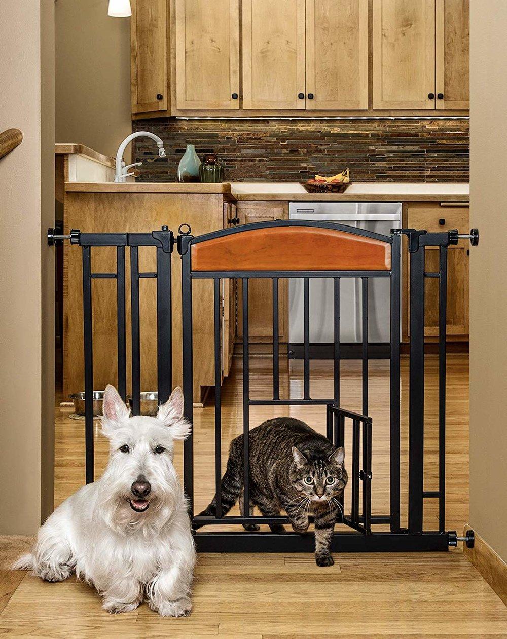 dog gate.jpg