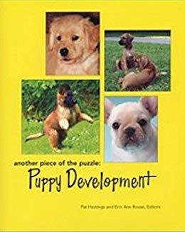 puppy development pat hastings.jpg