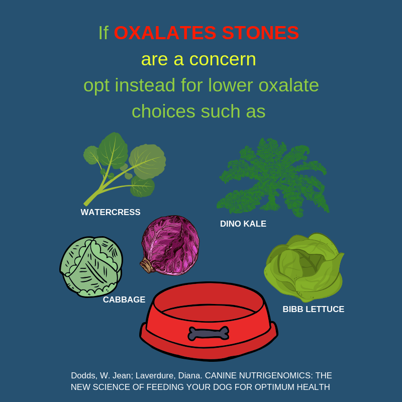 oxolate stones and vegs.png