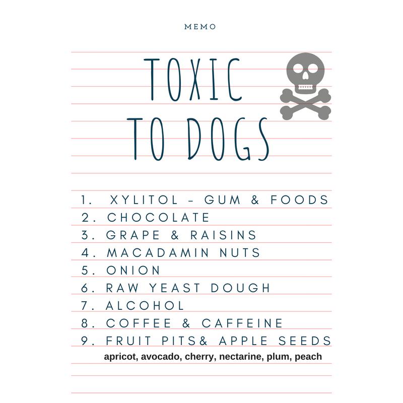 harmful foods.png