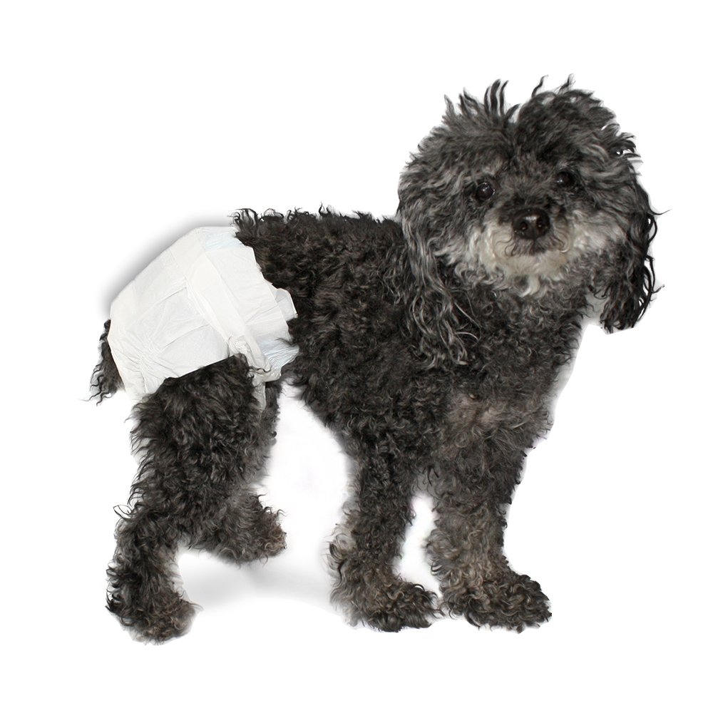 Disposable Diapers for Pets