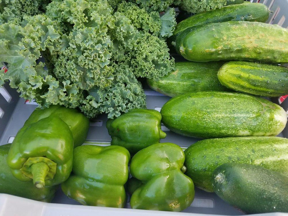 Green Veggies.jpg