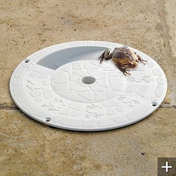 There are various escape methods you can buy for critters who climb or fall into your pool.