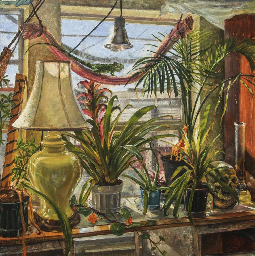 Still Life with Iguana Oakland, California