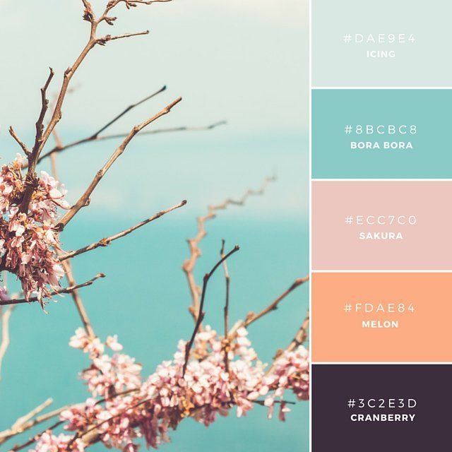 Source: https://designschool.canva.com/blog/brand-color-palette/