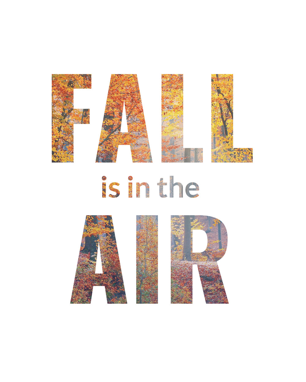 Fall-is-in-the-air.jpg