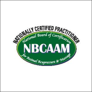 NBCAAM-logo-300px.jpg