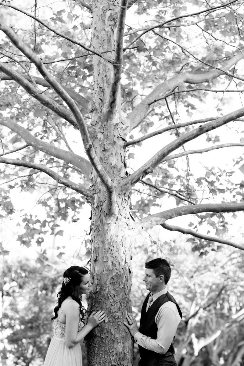 Noosa-Botanical-Gardens 226