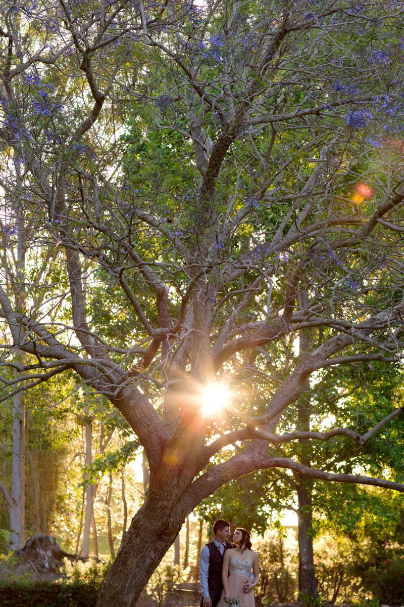Noosa-Botanical-Gardens 261