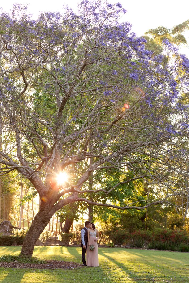 Noosa-Botanical-Gardens 265