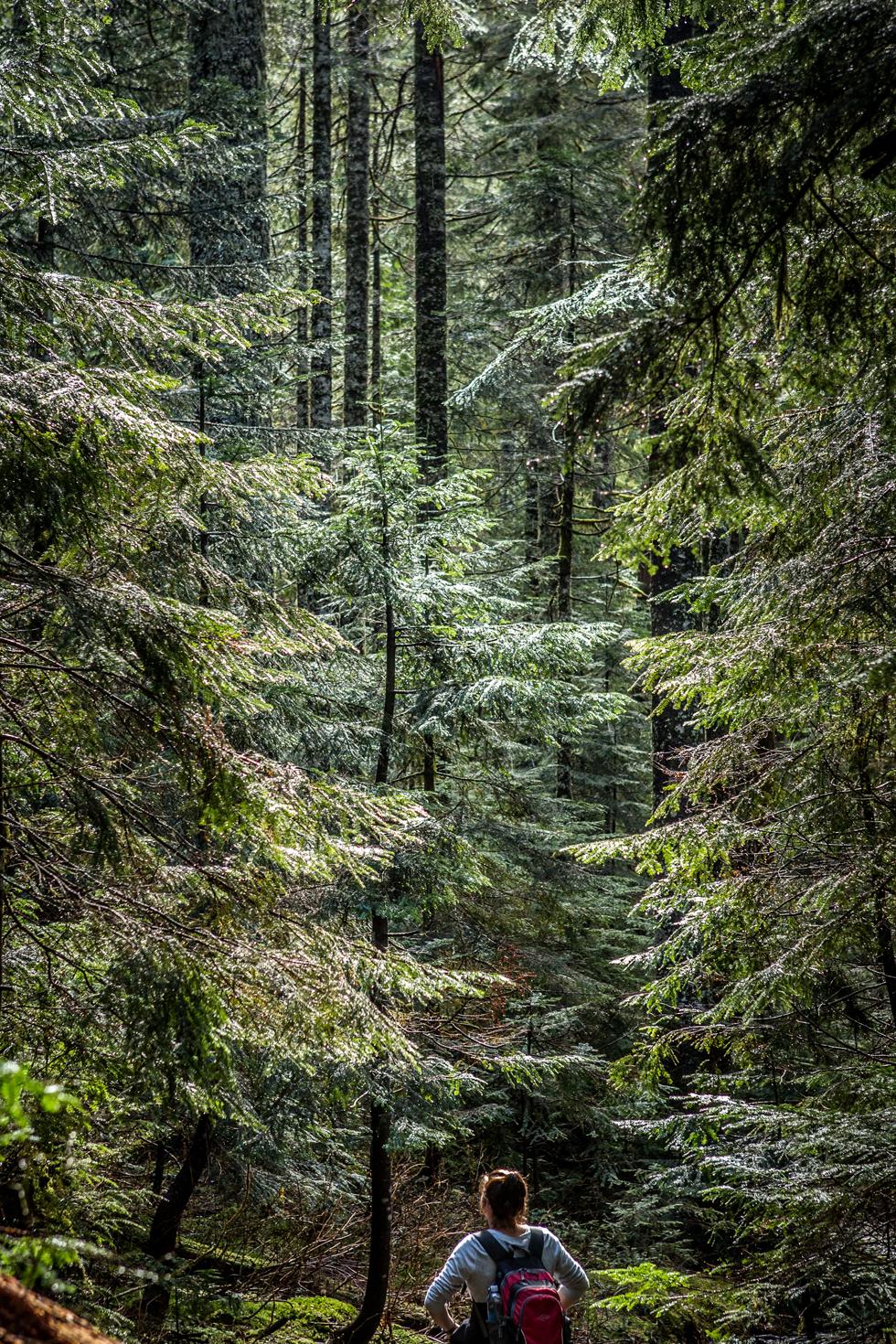 Nature-photographer-USA 1