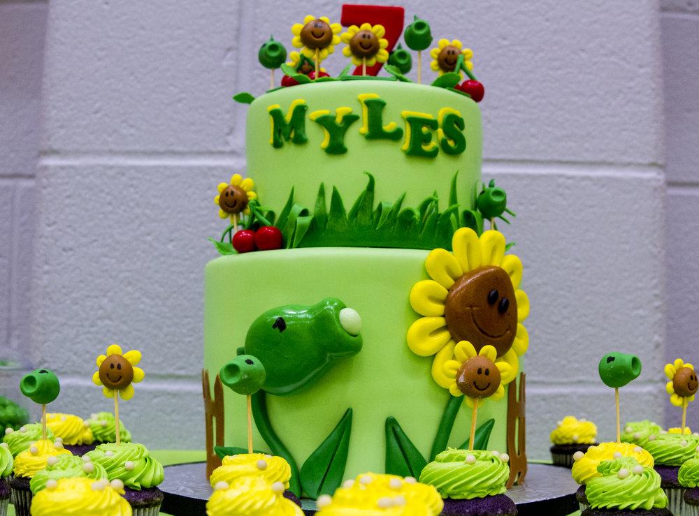 Miles 7th Birthday 2017-0002.jpg