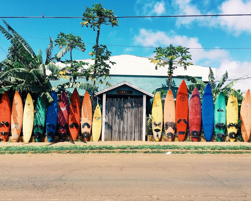 Yoga, Adventure & Seva Retreat - w/ Stacia Nero & Aqua VidaMay 5-12, 2018Esterillos | Costa Rica