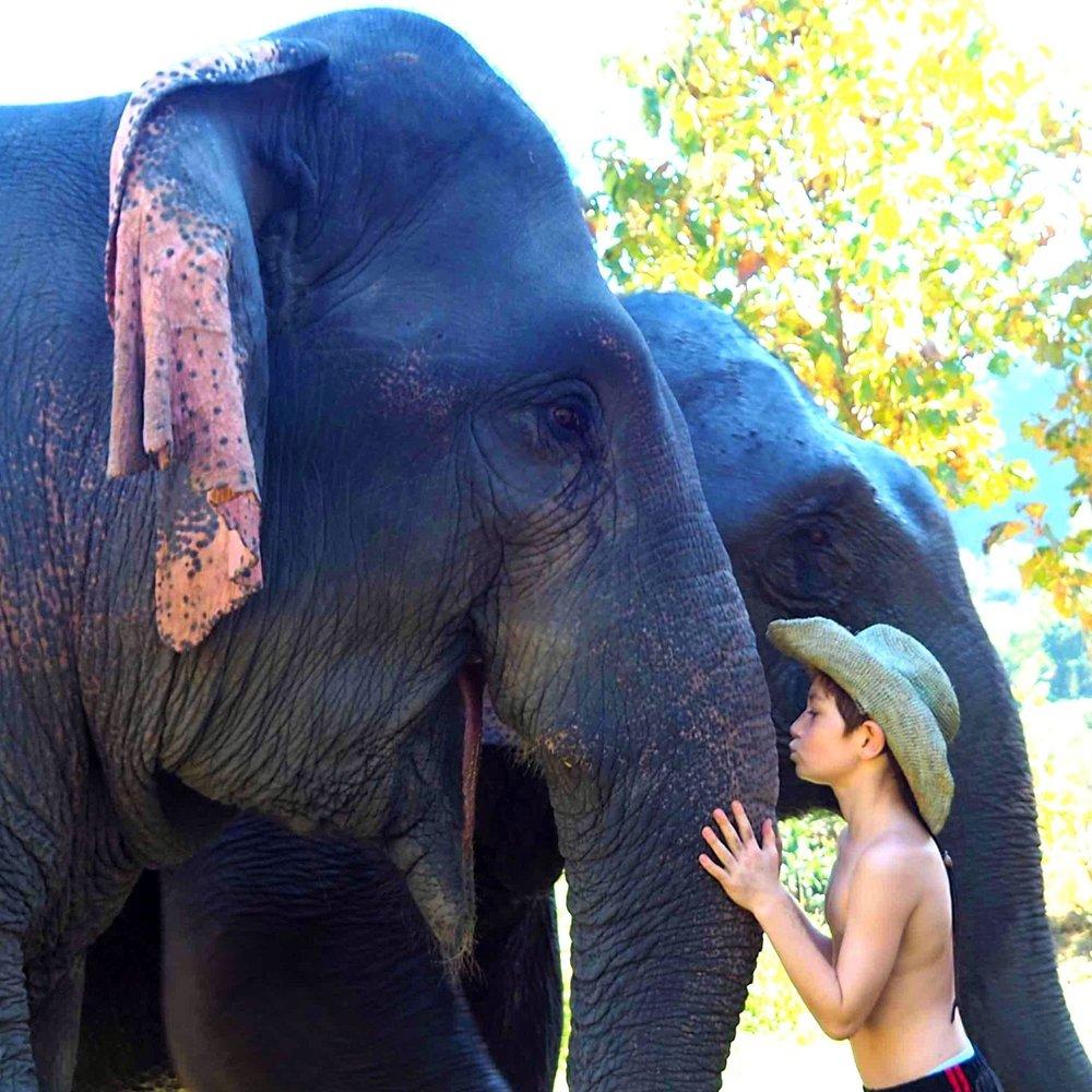 thailand homepage.jpg