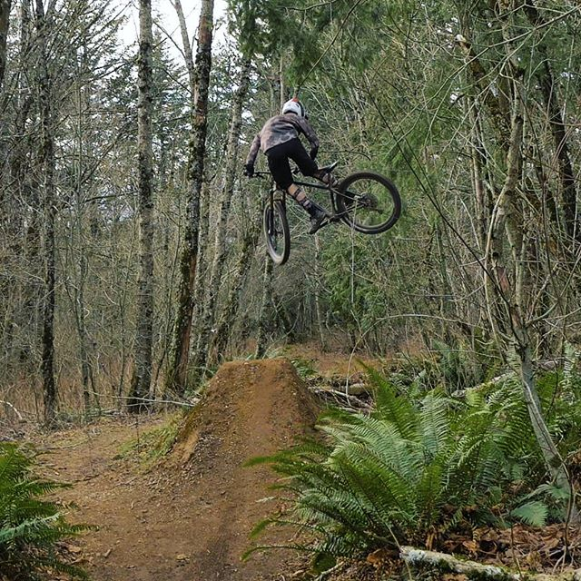 Getting comfortable on the @diamondbackbike sync'r carbon hardtail!  #daplow #ledgeview #mtb #hardtail #freeride #fullsend