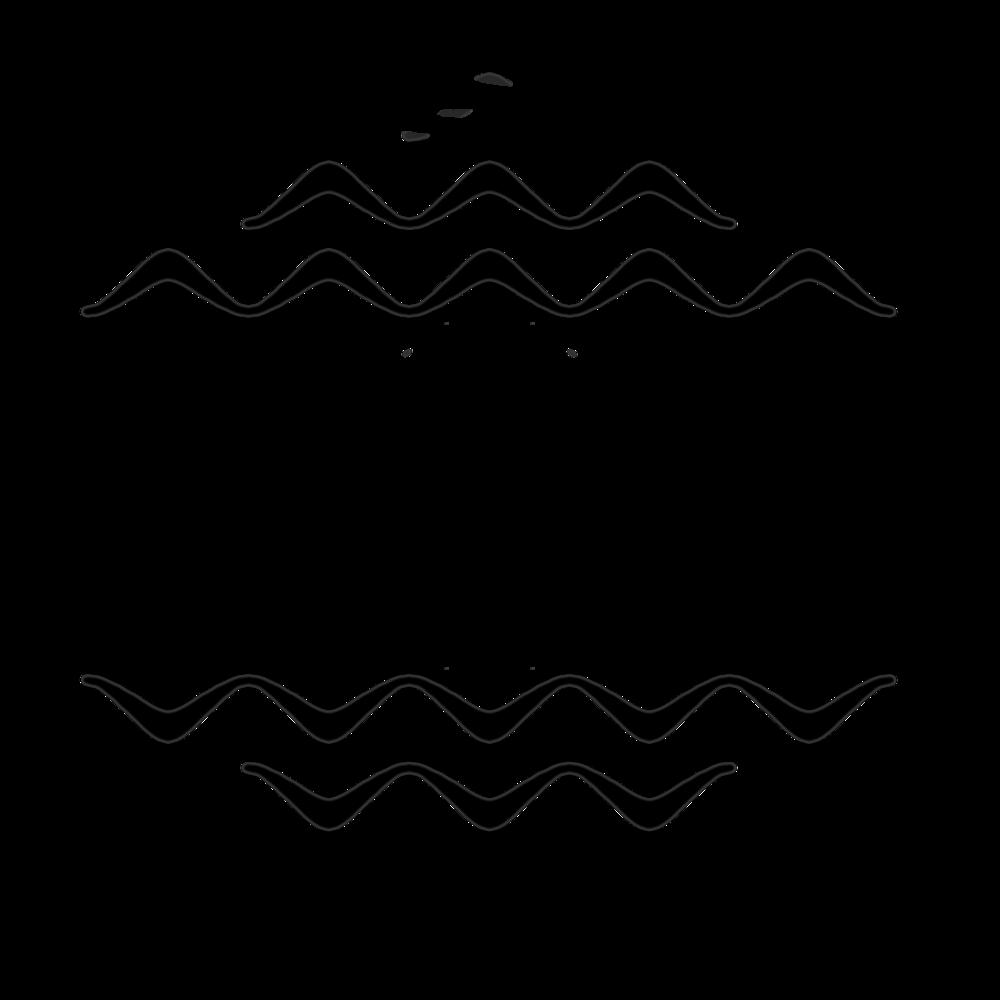 DIVR-logo-black.png