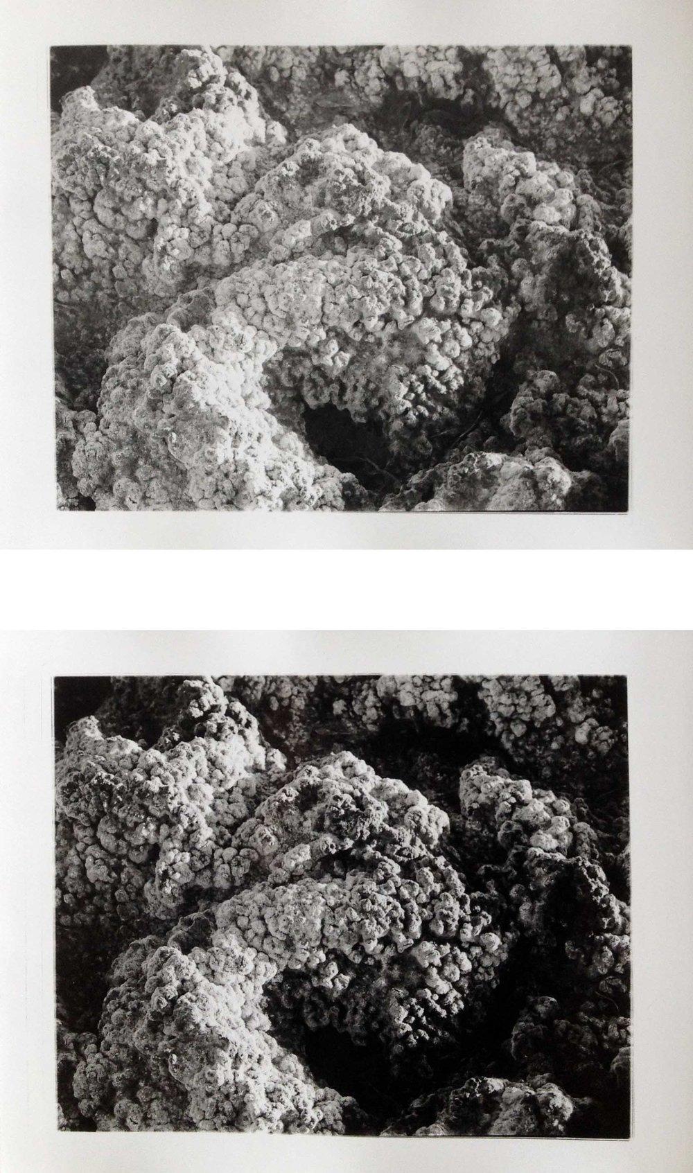 """Atacama Surface I, 2017  silver gelatin prints  8 x 10"""" diptych"""