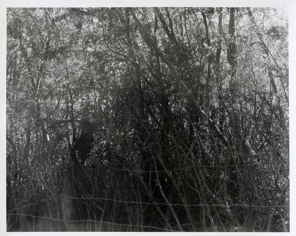 """Wall (I), 2017  silver gelatin print  8 x 10"""""""