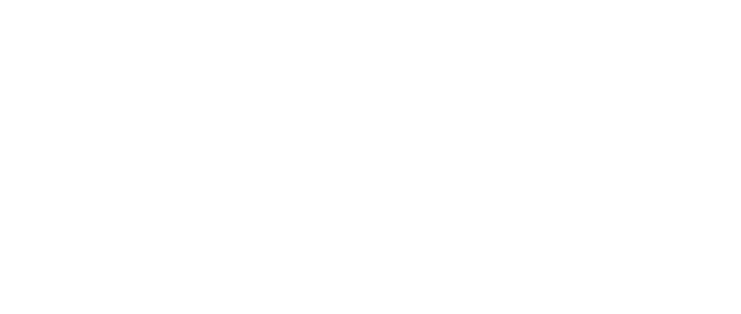 Strength and Strike Fitness