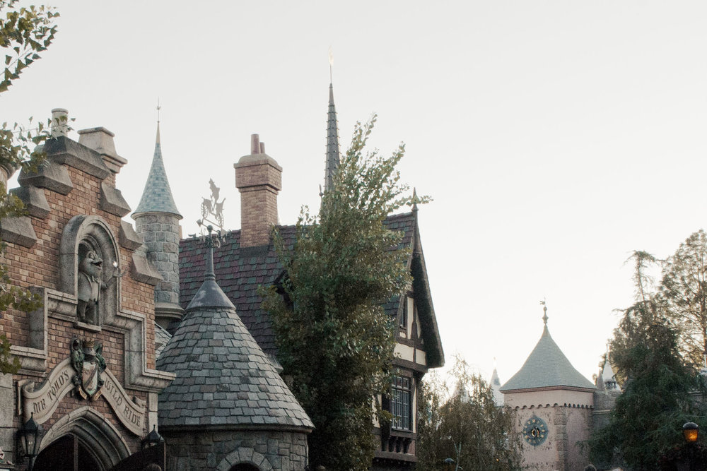 Disneyland2011_047.jpg