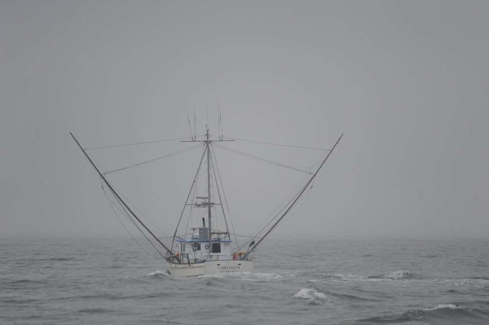 A fishing boat heading out into the fog.