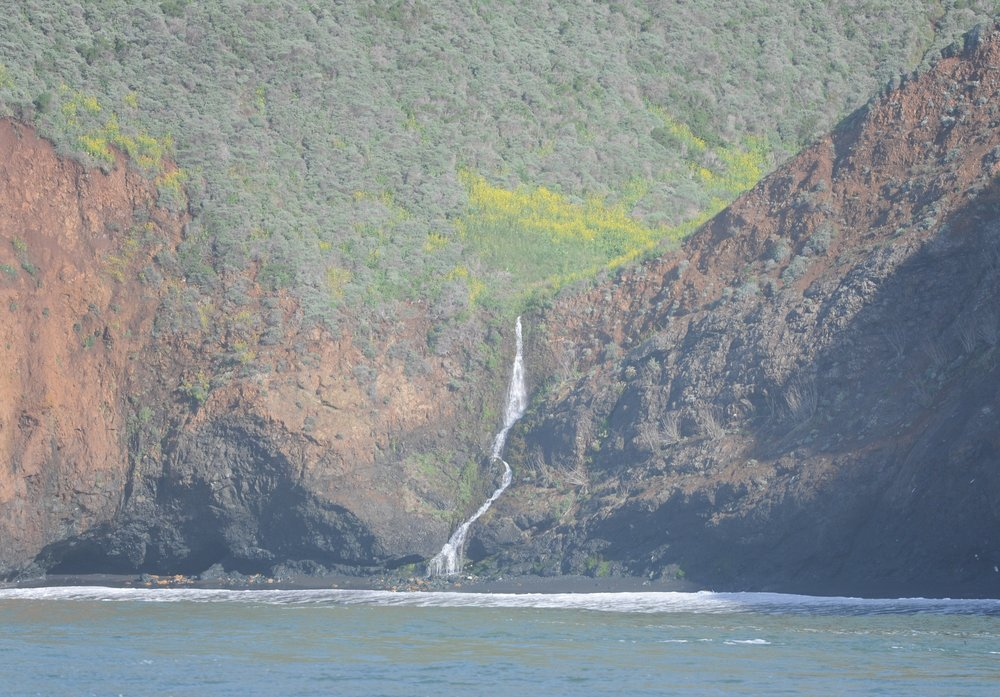 Waterfalls and wildflowers in the headlands.